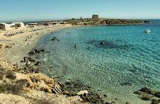 Thumbnail voyage de l'ISC Spain sur l'île de Tarbaca d'Alicante