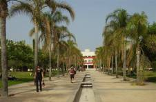 Thumbnail allée et jardins de l'Université d'Alicante